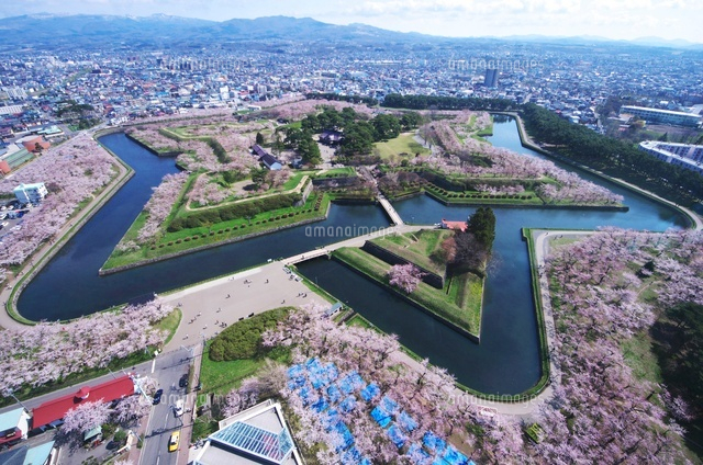 五稜郭公園と桜