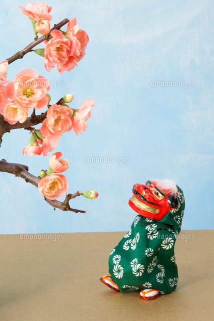 梅の花と獅子舞 (c)IDC/a.collectionRF