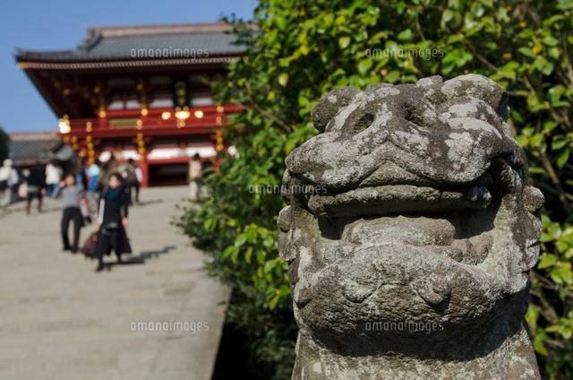 鎌倉鶴岡八幡宮の山門と狛犬 (c)JUNKO TAKAHASHI/a.collectionRF