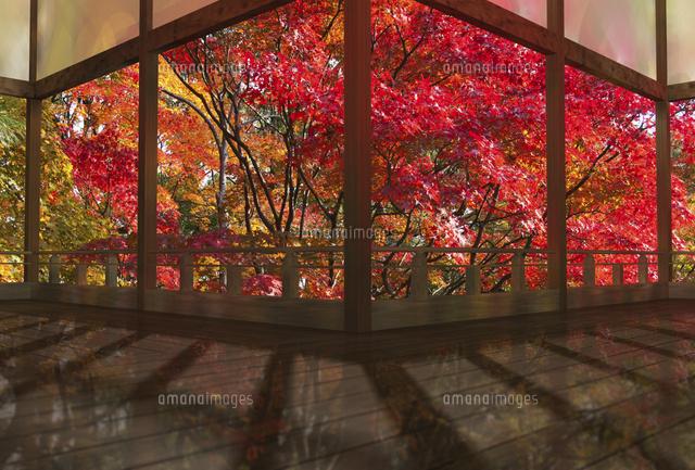 秋の和風建物の渡り廊下(c)SHIROH KOHNO/a.collectionRF
