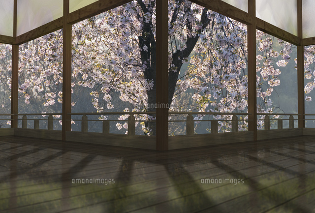 春の和風建物の渡り廊下(c)SHIROH KOHNO/a.collectionRF