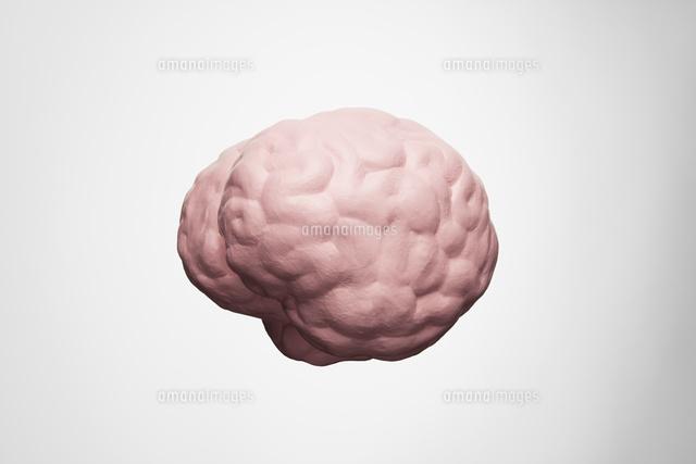 脳 (c)dkey/a.collectionRF