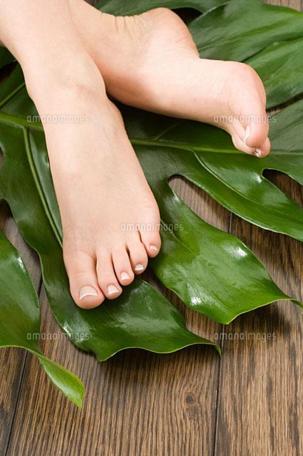 Female feet on leaf (c)Image Source