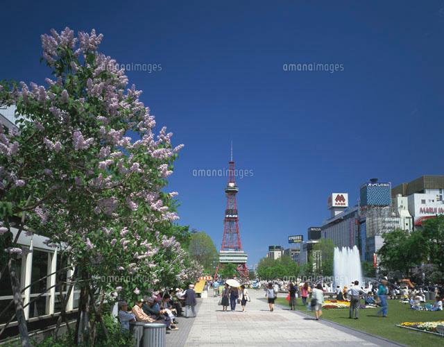 ライラックと大通公園 (c)GYRO PHOTOGRAPHY/a.collectionRF