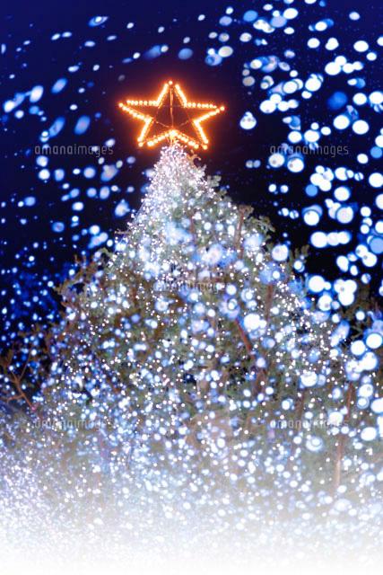 クリスマスツリー (c)GYRO PHOTOGRAPHY/a.collectionRF