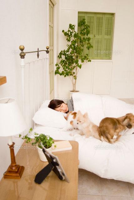 ベッドで眠る女性と犬 (c)DAJ
