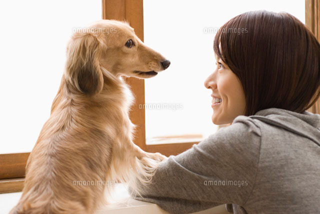 見つめあう女性と犬 (c)DAJ