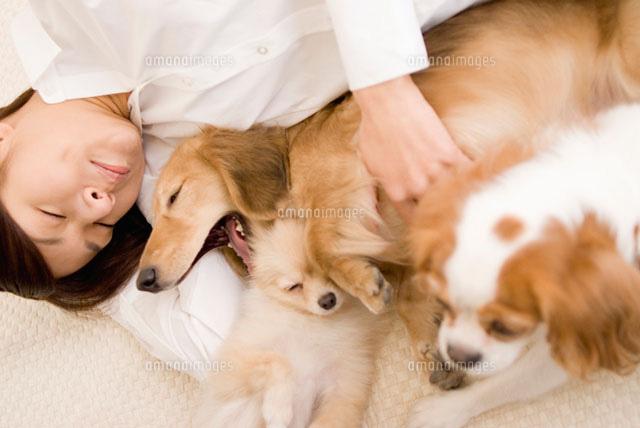 犬と女性のリラックスタイム (c)DAJ