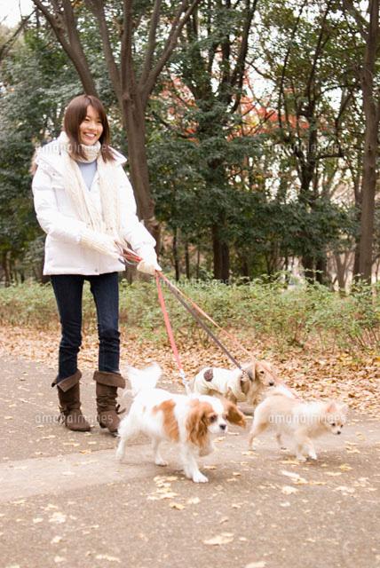 犬と散歩中の女性 (c)DAJ