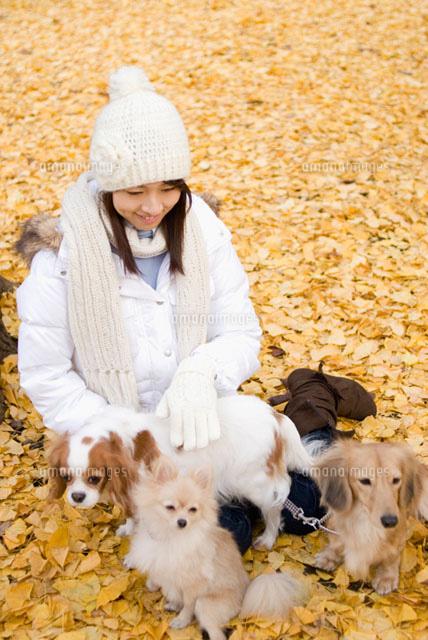 落ち葉の上に座る女性と犬 (c)DAJ