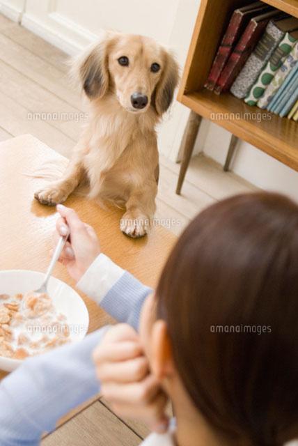食事中の女性をのぞきこむ犬 (c)DAJ