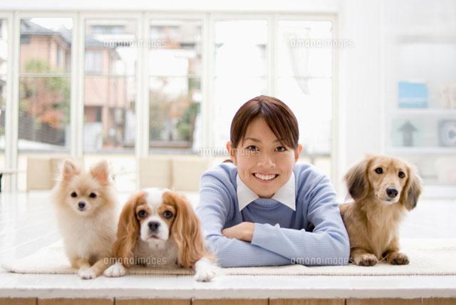 女性と3匹の犬 (c)DAJ