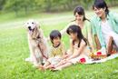 ピクニックする家族と犬