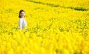 菜の花畑の中に立っている女性