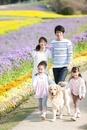花畑を歩く4人家族と犬