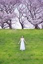 手を広げ上を見上げる女性と桜
