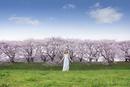 緑の上で手を広げ佇む女性と遠方の桜並木