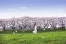 走る女性と遠方に広がる桜並木