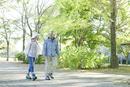 公園を散歩するシニアカップル