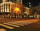 日本大通りのイチョウ並木の黄葉とイルミネーション