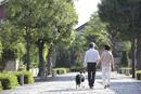 犬連れで散歩する後姿の中高年ファミリー