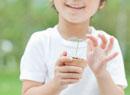 双葉を持つ子供の手