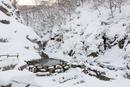 降雪のあと、早朝のサル用温泉