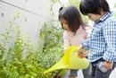 庭の草花に水やりをする女の子と男の子