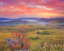 カルスト台地と柿の木と朝焼けと朝日と権現山などの山並み