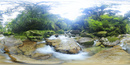 苔の橋付近の沢のVRパノラマ