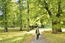 スオメンリンナ島の緑地を歩く観光客