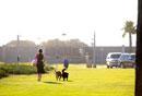 サンセットパークで犬の散歩