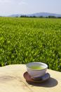 日本茶と茶畑