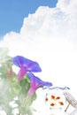 紫陽花と金魚鉢と青空