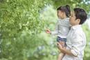 抱っこされ木の枝に手を伸ばす女の子