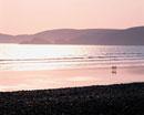 海辺を歩く2人のシルエット