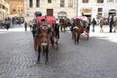 ローマ、パンテオン前の馬車