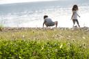 湖畔に咲くシロツメクサと子供