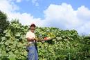 収穫した新鮮野菜を持つ農家の男性