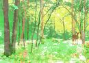 春の森の中