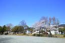 市ケ尾下根公園