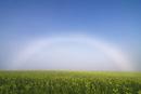キガラシの丘と白虹