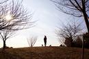 犬の散歩をする女性のシルエット