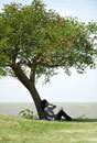 Young woman sitting under tree,reading book