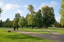 ケンジントン・ガーデンズ 芝生と木立