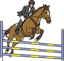 馬術競技 障害飛越