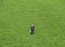 草原の中のビジネスマン