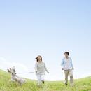 草原で犬と散歩をする日本人夫婦