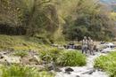 川と2人のシニア男性