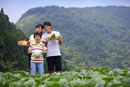 Young family with one child holding vegetables in the vegeta